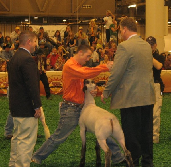 2007 Grand Champion Houston